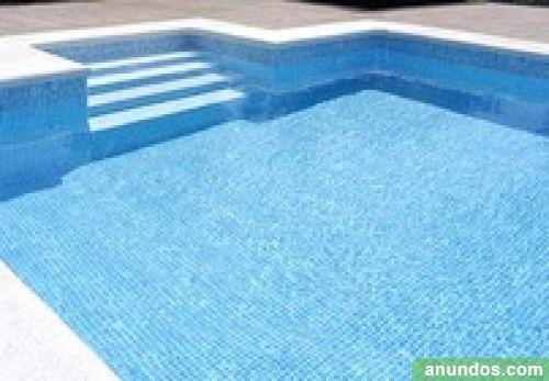 Servicios para piscinas construcci n mantenimiento for Barredera piscina