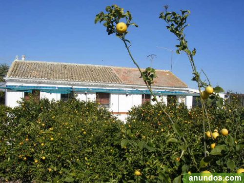Casa de campo con 5.000 m2 de huerto san javier