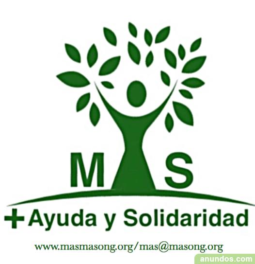 Voluntarios mercadillo solidario