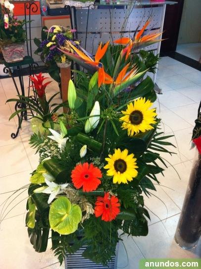 Floresramos y plantas decoracion